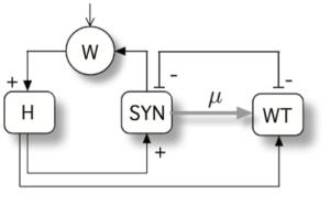 indirect-cooperation
